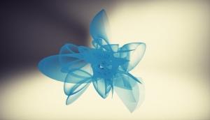 flower-xray-v2